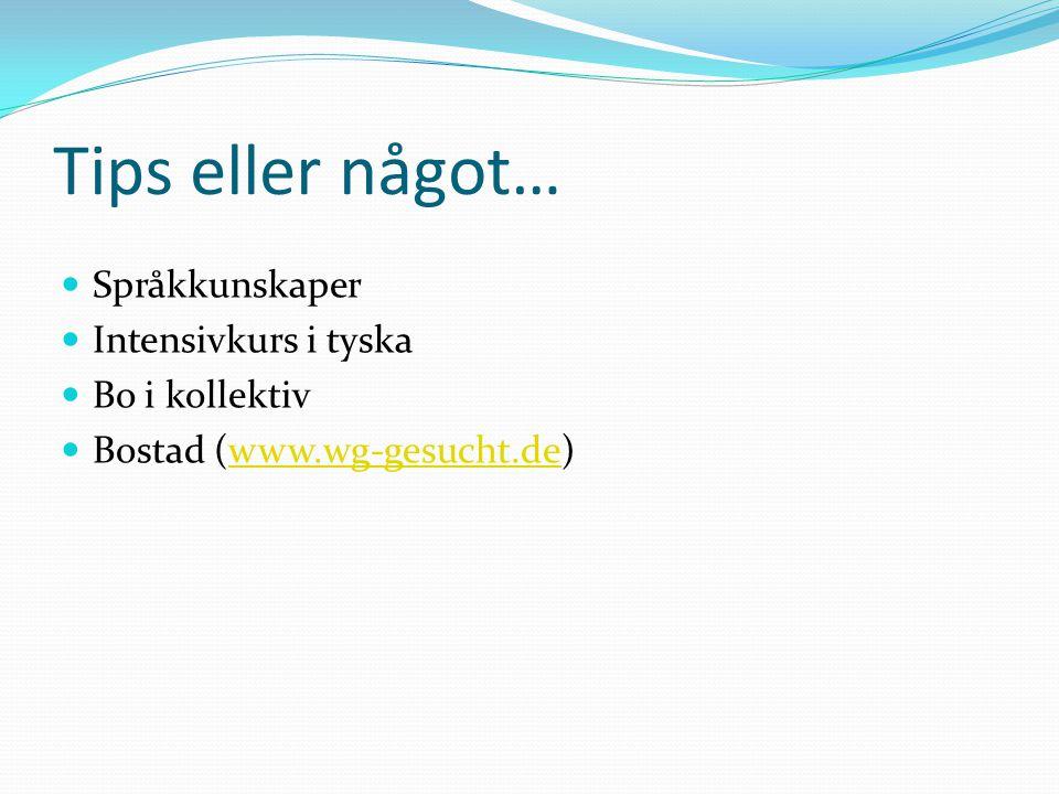 Tips eller något… Språkkunskaper Intensivkurs i tyska Bo i kollektiv Bostad (www.wg-gesucht.de)www.wg-gesucht.de