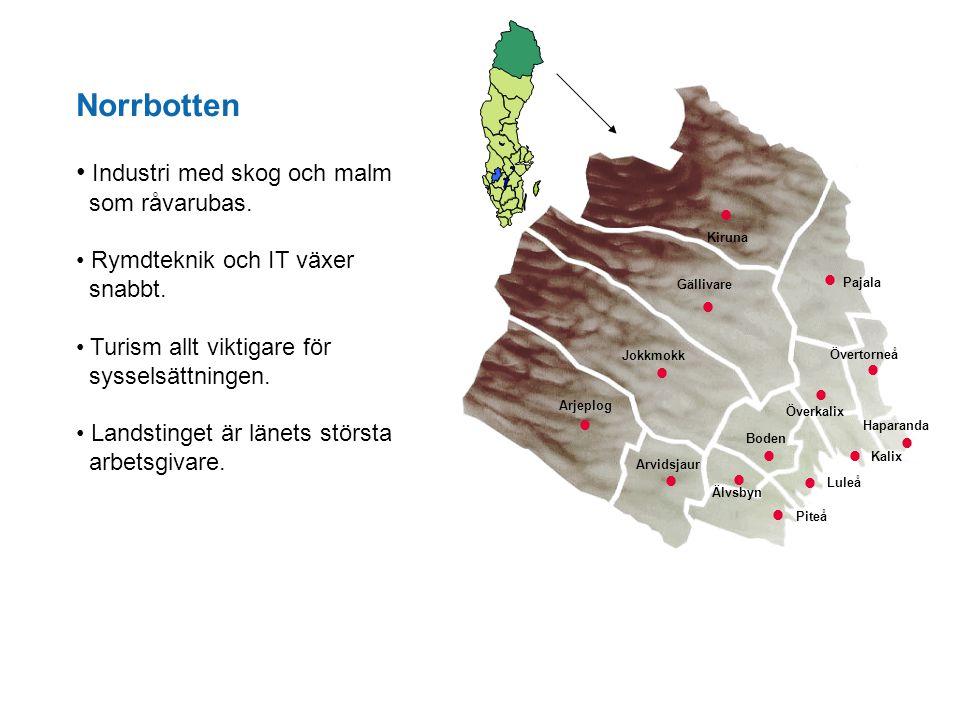 Norrbotten Industri med skog och malm som råvarubas. Rymdteknik och IT växer snabbt. Turism allt viktigare för sysselsättningen. Landstinget är länets