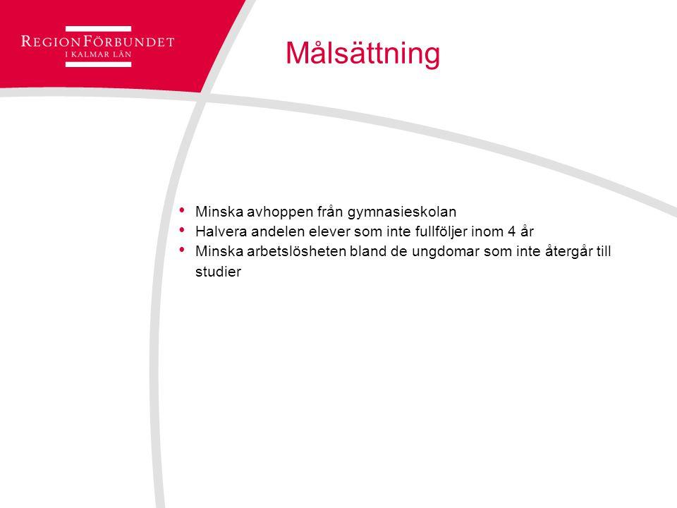 Tidsram Plug In pågår mellan 2012-2014 Stöd från Europeiska socialfonden