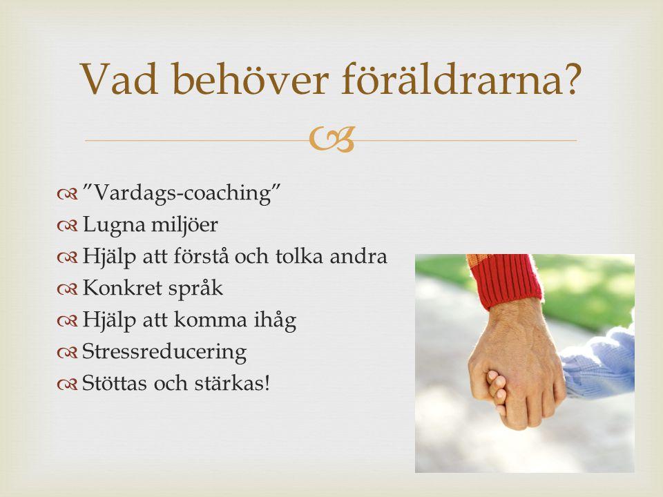 """  """"Vardags-coaching""""  Lugna miljöer  Hjälp att förstå och tolka andra  Konkret språk  Hjälp att komma ihåg  Stressreducering  Stöttas och stär"""