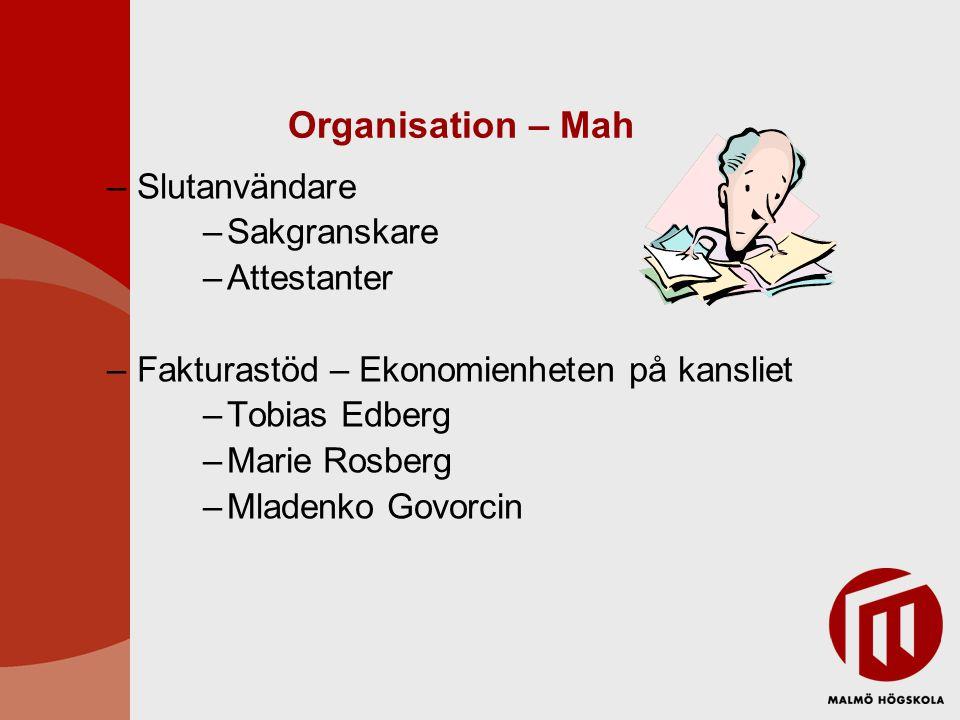–Den kontering som ligger i Sakgranskarens uppdrag innebär att ange konto och projekt/delprojekt samt verksamhetskod för fakturan.