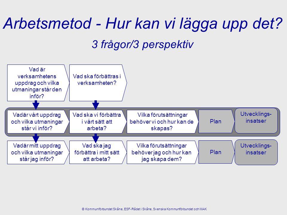 3 frågor/3 perspektiv Vadär vårt uppdrag och vilka utmaningar står vi inför? Vilka förutsättningar behöver vi och hur kan de skapas? Vad ska vi förbät