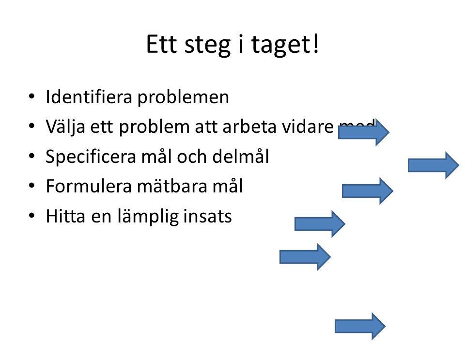 Ett steg i taget! Identifiera problemen Välja ett problem att arbeta vidare med Specificera mål och delmål Formulera mätbara mål Hitta en lämplig insa