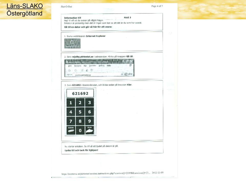 Genomförande Skapa en brukarundersökning Utskick av lösenord och information Frågeassistent