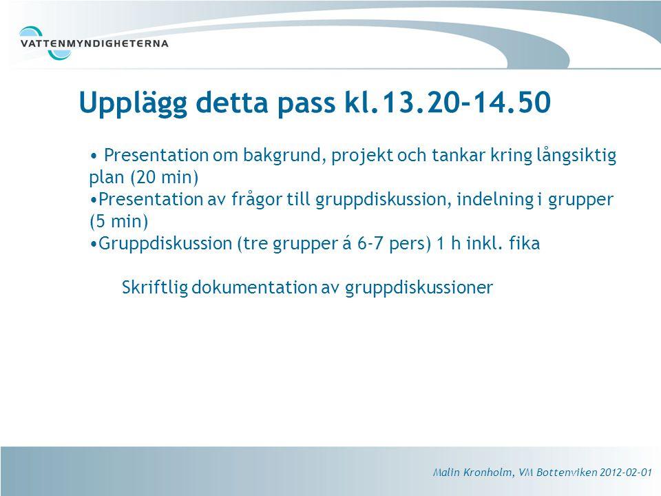 Upplägg detta pass kl.13.20-14.50 Malin Kronholm, VM Bottenviken 2012-02-01 Presentation om bakgrund, projekt och tankar kring långsiktig plan (20 min) Presentation av frågor till gruppdiskussion, indelning i grupper (5 min) Gruppdiskussion (tre grupper á 6-7 pers) 1 h inkl.