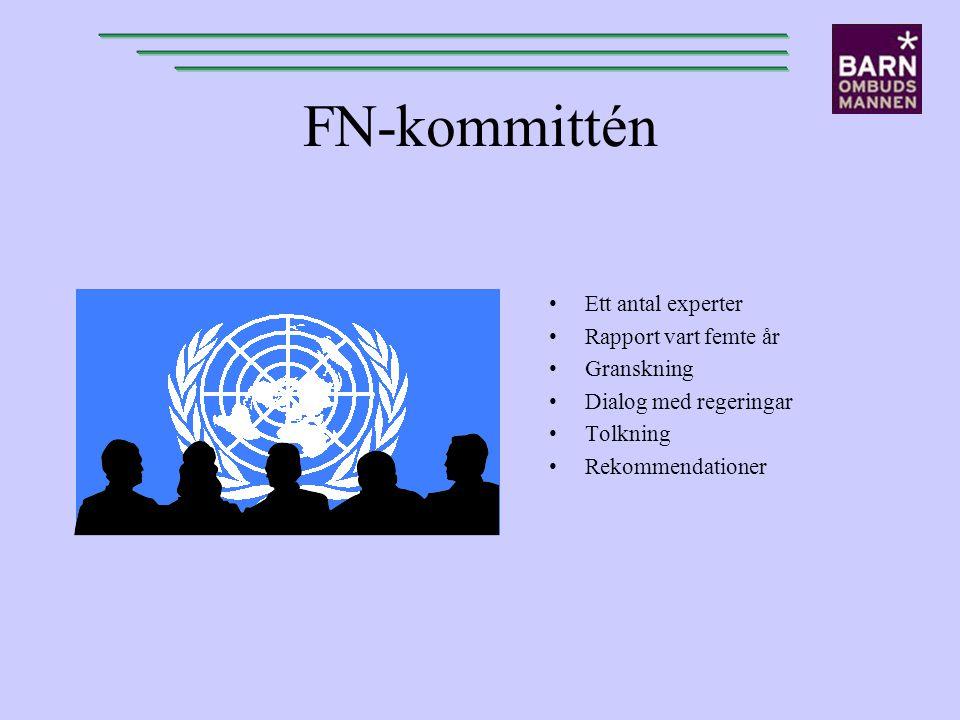 FN-kommittén Ett antal experter Rapport vart femte år Granskning Dialog med regeringar Tolkning Rekommendationer