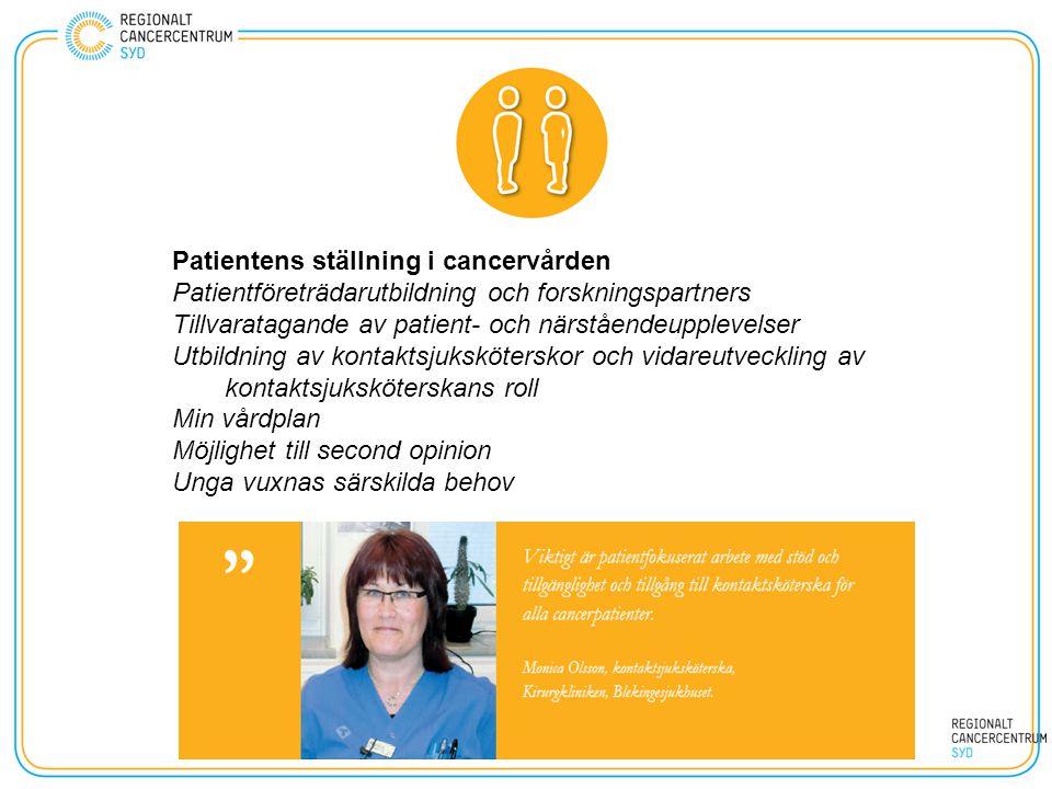 Patientens ställning i cancervården Patientföreträdarutbildning och forskningspartners Tillvaratagande av patient- och närståendeupplevelser Utbildnin