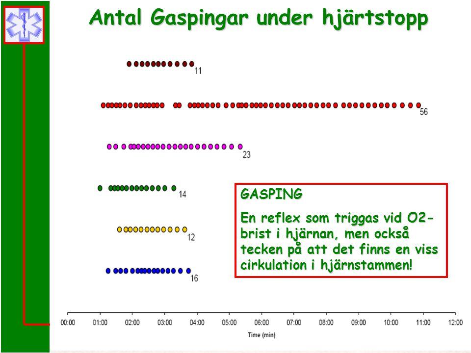 Prehospital Hjärt-Lung Räddning i Skåne GASPING En reflex som triggas vid O2- brist i hjärnan, men också tecken på att det finns en viss cirkulation i
