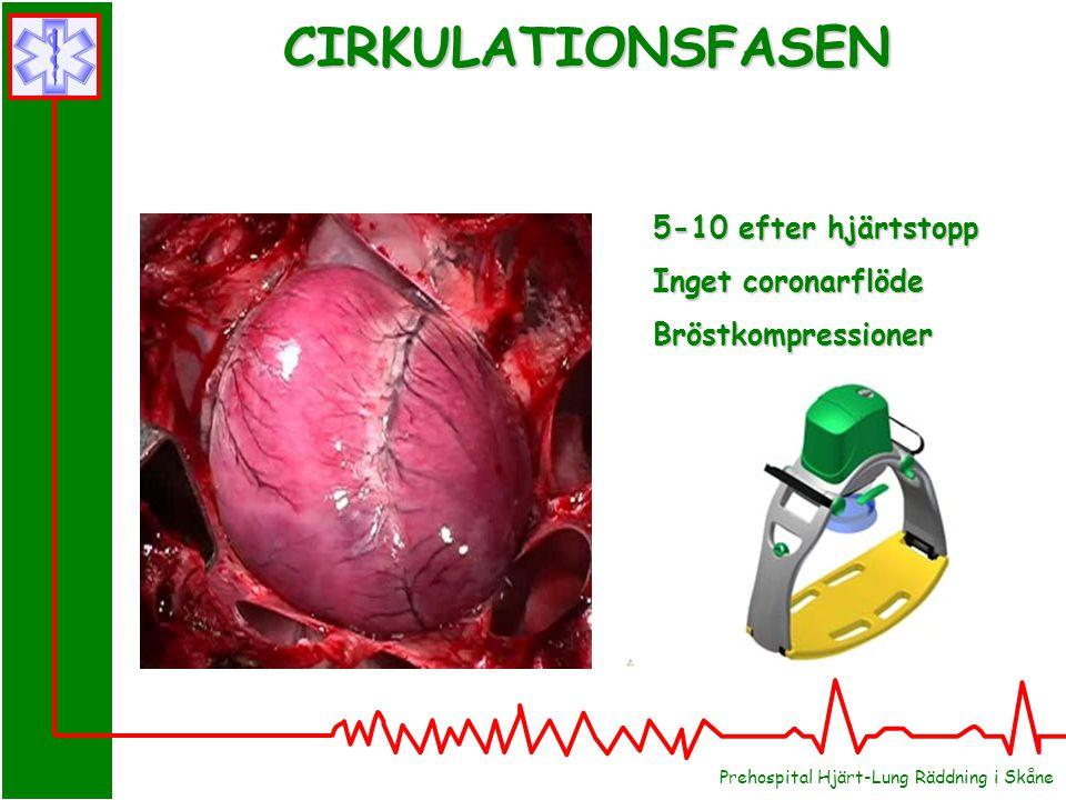 Prehospital Hjärt-Lung Räddning i Skåne CIRKULATIONSFASEN 5-10 efter hjärtstopp Inget coronarflöde Bröstkompressioner