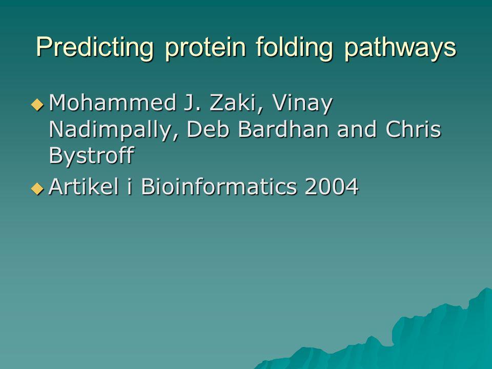  Mohammed J. Zaki, Vinay Nadimpally, Deb Bardhan and Chris Bystroff  Artikel i Bioinformatics 2004