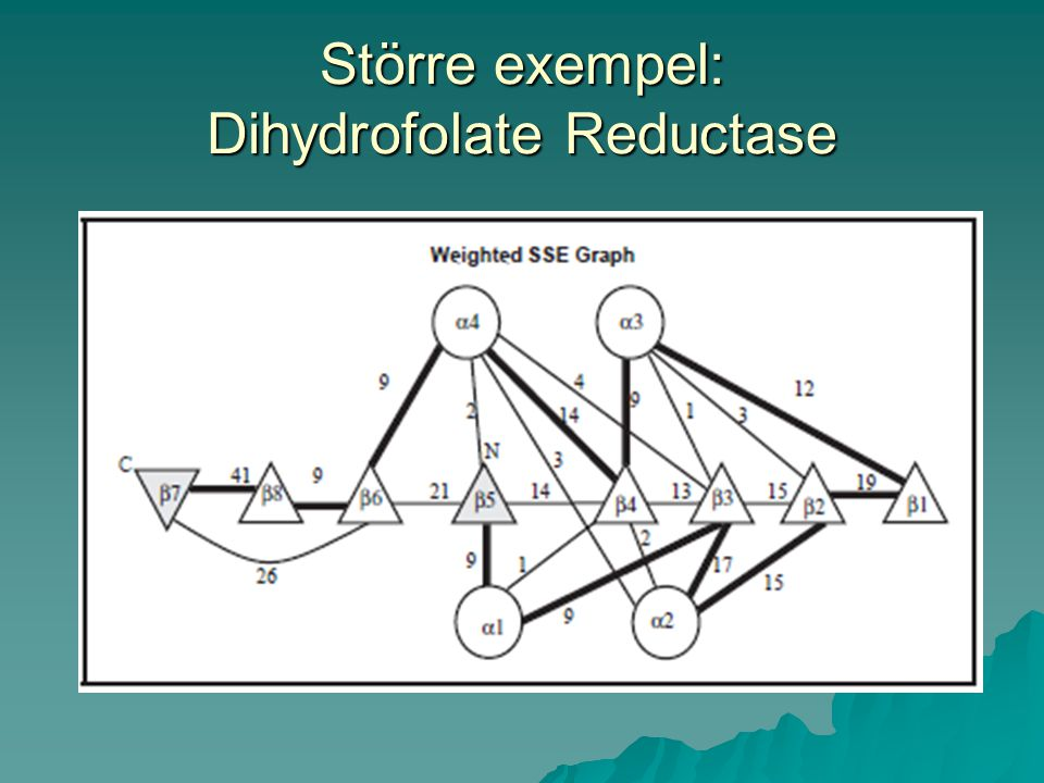 Större exempel: Dihydrofolate Reductase