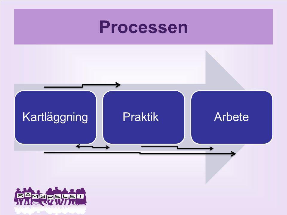 Processen KartläggningPraktikArbete