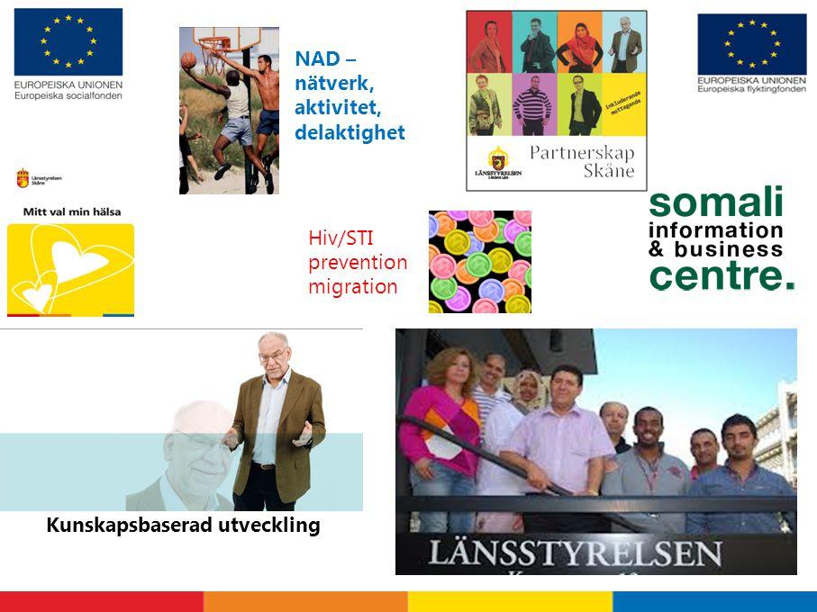 Kunskapsbaserad utveckling NAD – nätverk, aktivitet, delaktighet Hiv/STI prevention migration