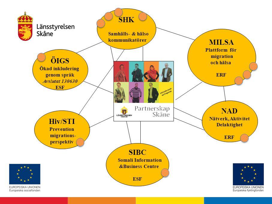 MILSA Plattform för migration och hälsa ERF ÖIGS Ökad inkludering genom språk Avslutat 130630 ESF NAD Nätverk, Aktivitet Delaktighet ERF Hiv/STI Preve