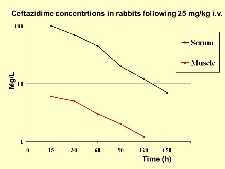 Ceftazidime concentrtions in rabbits following 25 mg/kg i.v. Mg/L Time (h)