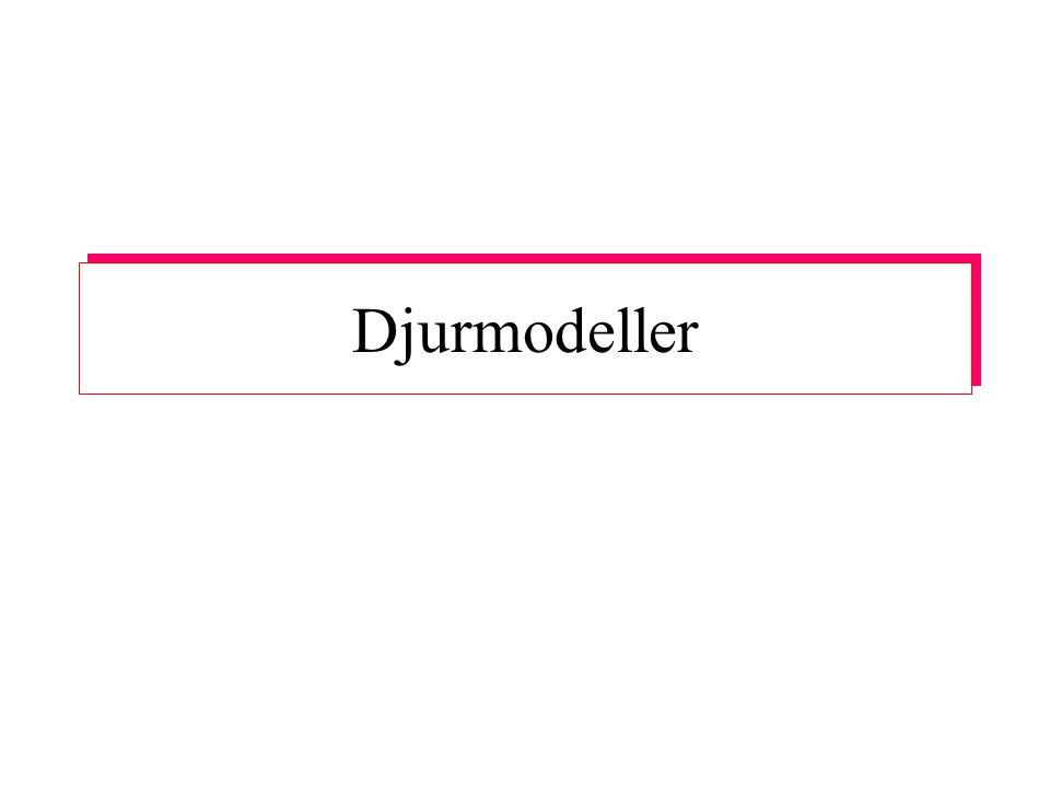 Djurmodeller