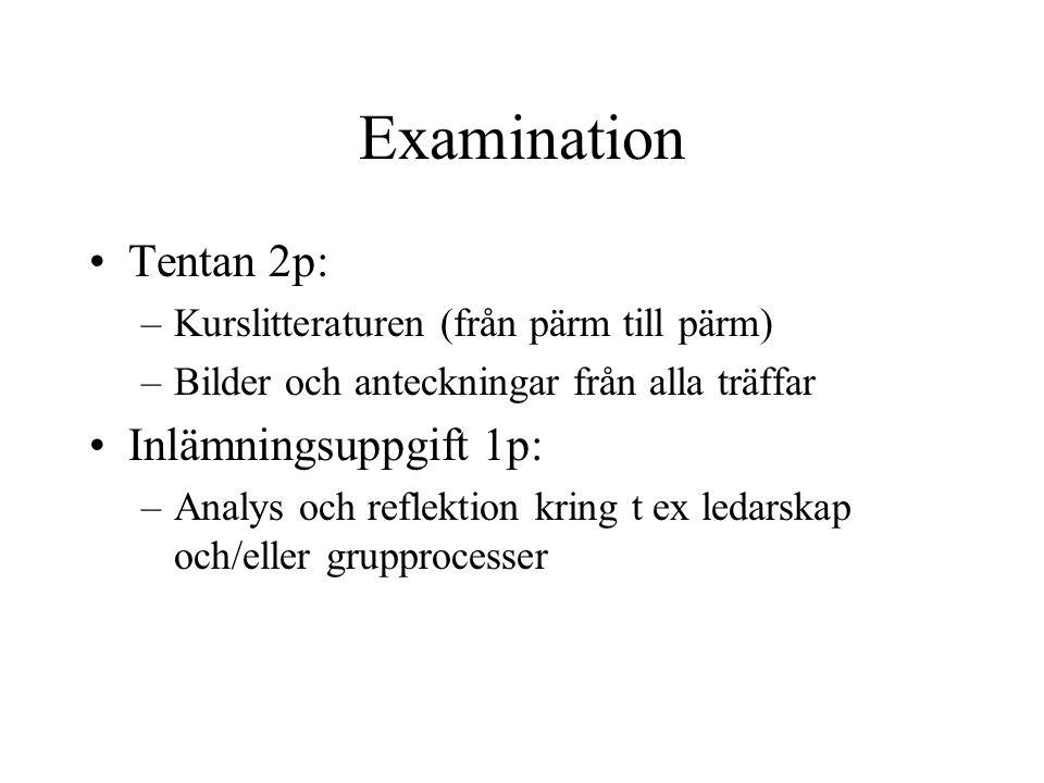 Examination Tentan 2p: –Kurslitteraturen (från pärm till pärm) –Bilder och anteckningar från alla träffar Inlämningsuppgift 1p: –Analys och reflektion