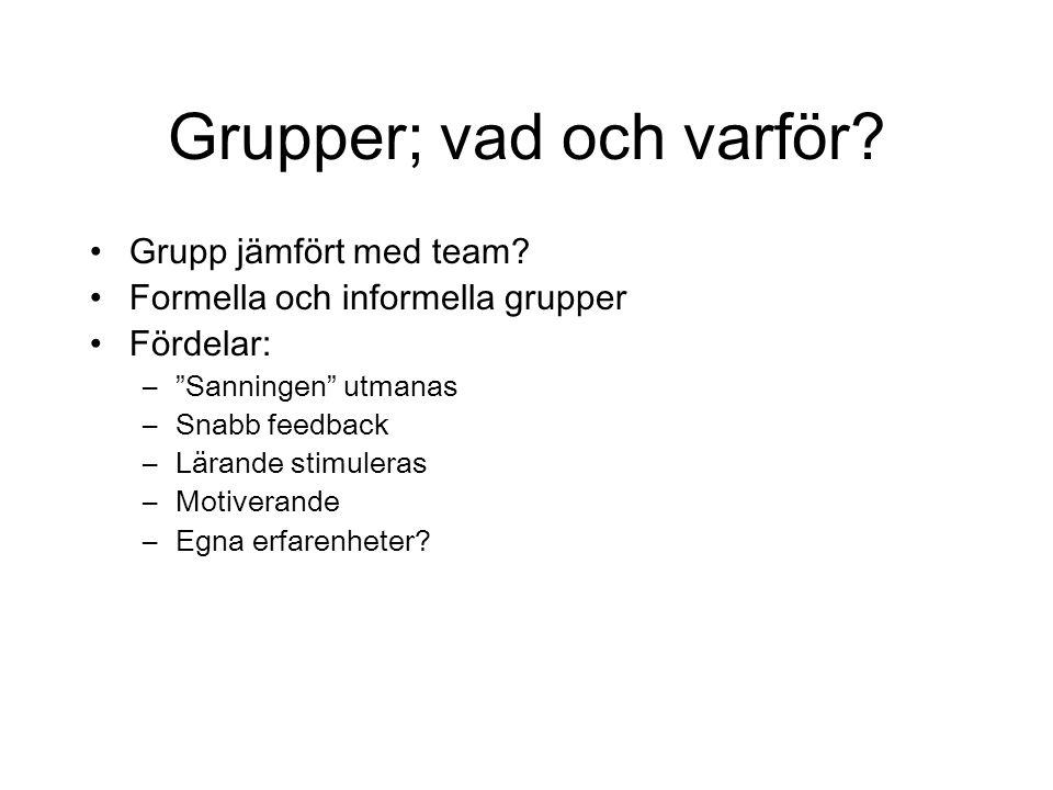 """Grupper; vad och varför? Grupp jämfört med team? Formella och informella grupper Fördelar: –""""Sanningen"""" utmanas –Snabb feedback –Lärande stimuleras –M"""
