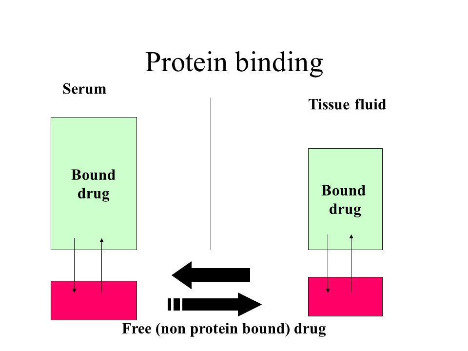 Protein binding Bound drug Bound drug Serum Tissue fluid Free (non protein bound) drug