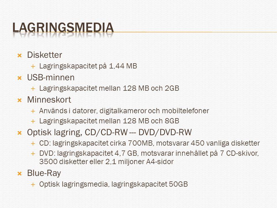  Disketter  Lagringskapacitet på 1,44 MB  USB-minnen  Lagringskapacitet mellan 128 MB och 2GB  Minneskort  Används i datorer, digitalkameror och