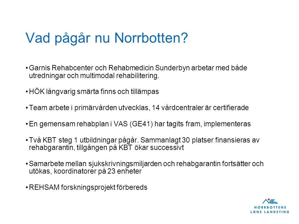 Vad pågår nu Norrbotten? Garnis Rehabcenter och Rehabmedicin Sunderbyn arbetar med både utredningar och multimodal rehabilitering. HÖK långvarig smärt