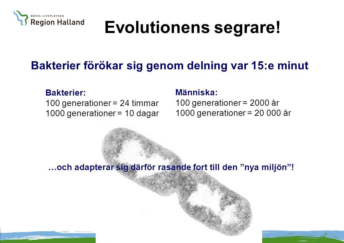Bakterier förökar sig genom delning var 15:e minut Bakterier: 100 generationer = 24 timmar 1000 generationer = 10 dagar Människa: 100 generationer = 2