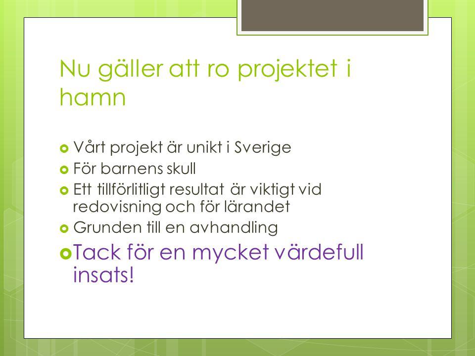 Nu gäller att ro projektet i hamn  Vårt projekt är unikt i Sverige  För barnens skull  Ett tillförlitligt resultat är viktigt vid redovisning och för lärandet  Grunden till en avhandling  Tack för en mycket värdefull insats!