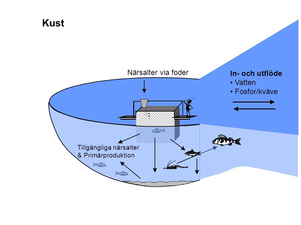 Närsalter via foder In- och utflöde Vatten Fosfor/kväve Tillgängliga närsalter & Primärproduktion Kust