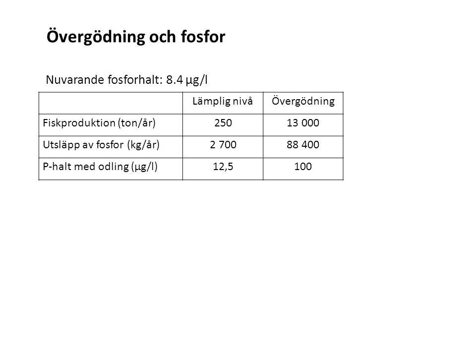 Lämplig nivåÖvergödning Fiskproduktion (ton/år)25013 000 Utsläpp av fosfor (kg/år)2 70088 400 P-halt med odling (μg/l)12,5100 Nuvarande fosforhalt: 8.