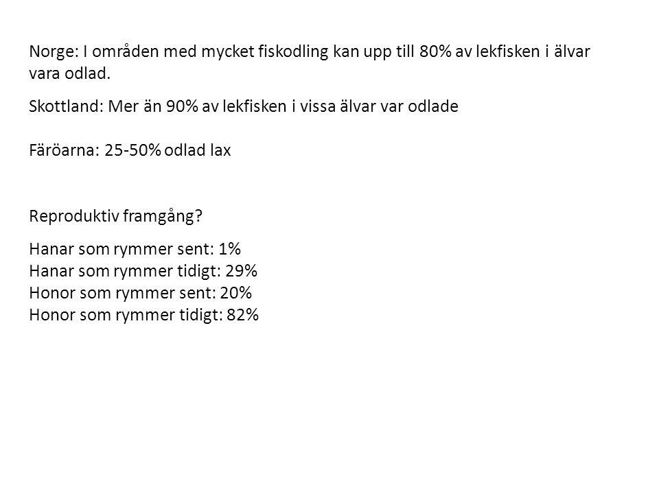 Norge: I områden med mycket fiskodling kan upp till 80% av lekfisken i älvar vara odlad. Skottland: Mer än 90% av lekfisken i vissa älvar var odlade F