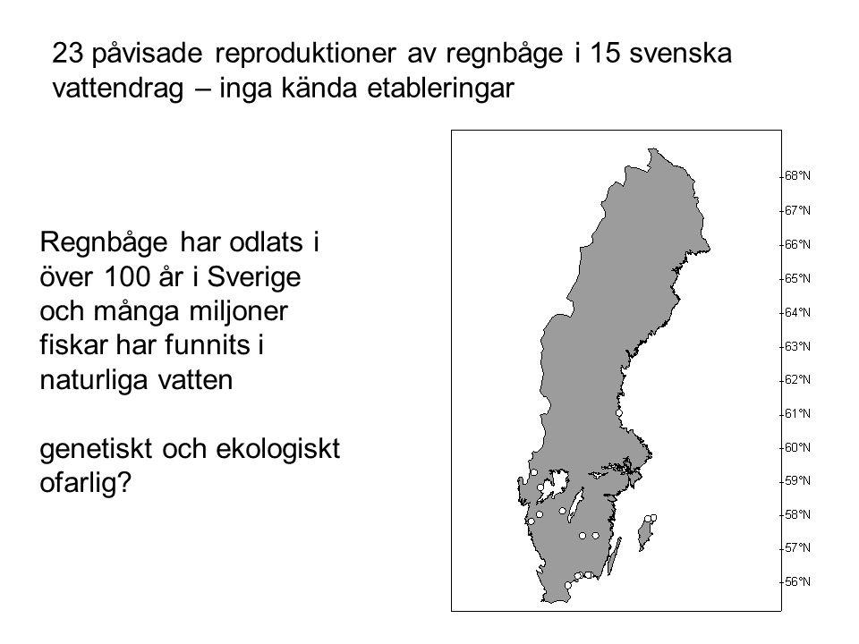 23 påvisade reproduktioner av regnbåge i 15 svenska vattendrag – inga kända etableringar Regnbåge har odlats i över 100 år i Sverige och många miljone