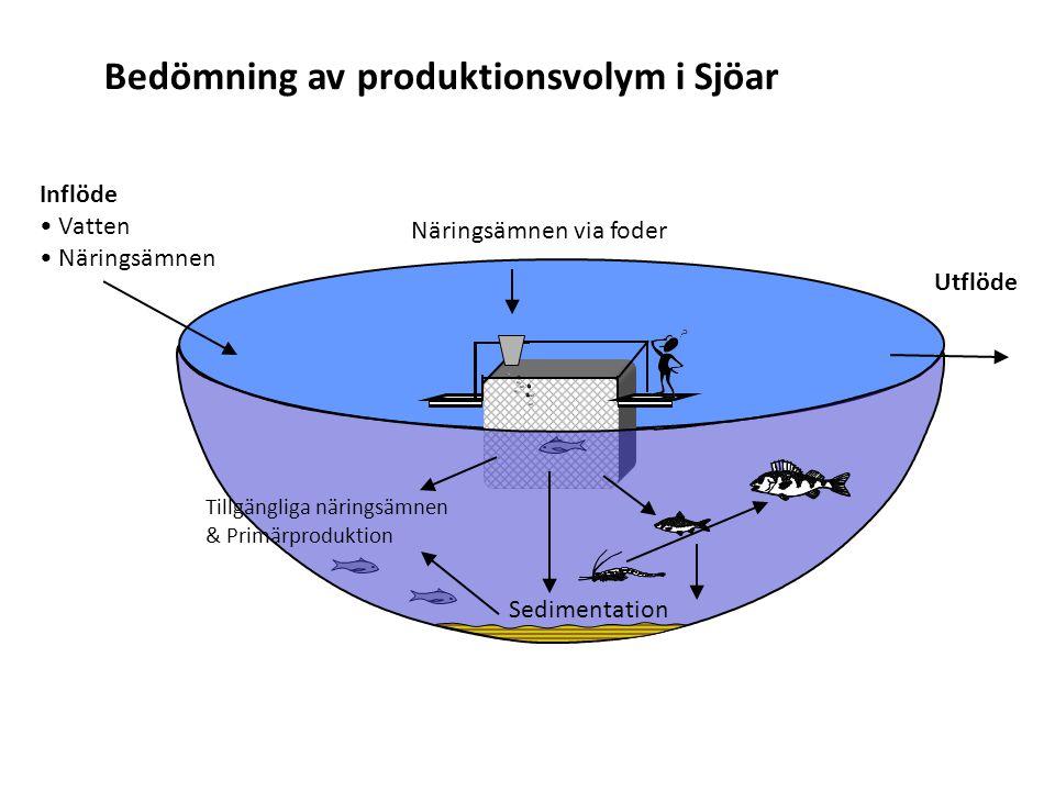 Inflöde Vatten Näringsämnen Utflöde Tillgängliga näringsämnen & Primärproduktion Näringsämnen via foder Bedömning av produktionsvolym i Sjöar Sediment