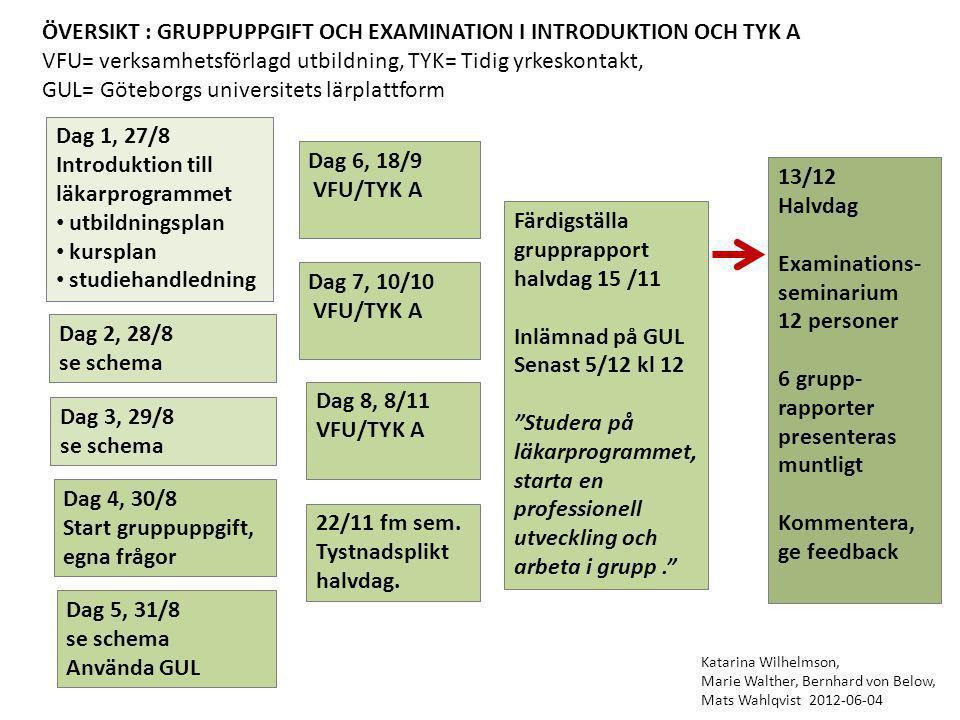 ÖVERSIKT : GRUPPUPPGIFT OCH EXAMINATION I INTRODUKTION OCH TYK A VFU= verksamhetsförlagd utbildning, TYK= Tidig yrkeskontakt, GUL= Göteborgs universit