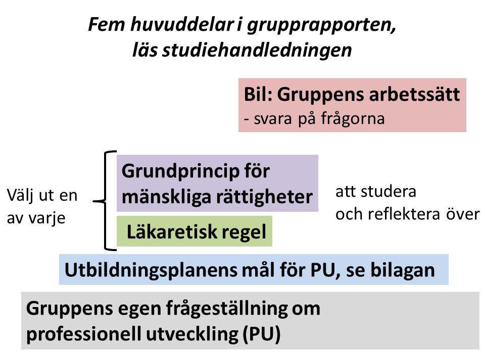 Fem huvuddelar i grupprapporten, läs studiehandledningen Gruppens egen frågeställning om professionell utveckling (PU) Utbildningsplanens mål för PU,