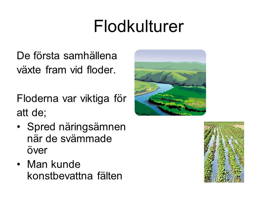 Flodkulturer De första samhällena växte fram vid floder. Floderna var viktiga för att de; Spred näringsämnen när de svämmade över Man kunde konstbevat
