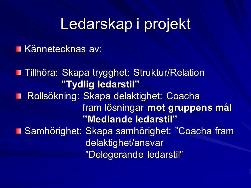 """Ledarskap i projekt Kännetecknas av: Tillhöra: Skapa trygghet: Struktur/Relation """"Tydlig ledarstil"""" """"Tydlig ledarstil"""" Rollsökning: Skapa delaktighet:"""