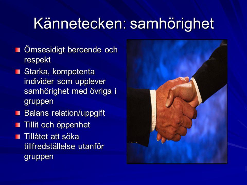 Kännetecken: samhörighet Ömsesidigt beroende och respekt Starka, kompetenta individer som upplever samhörighet med övriga i gruppen Balans relation/up