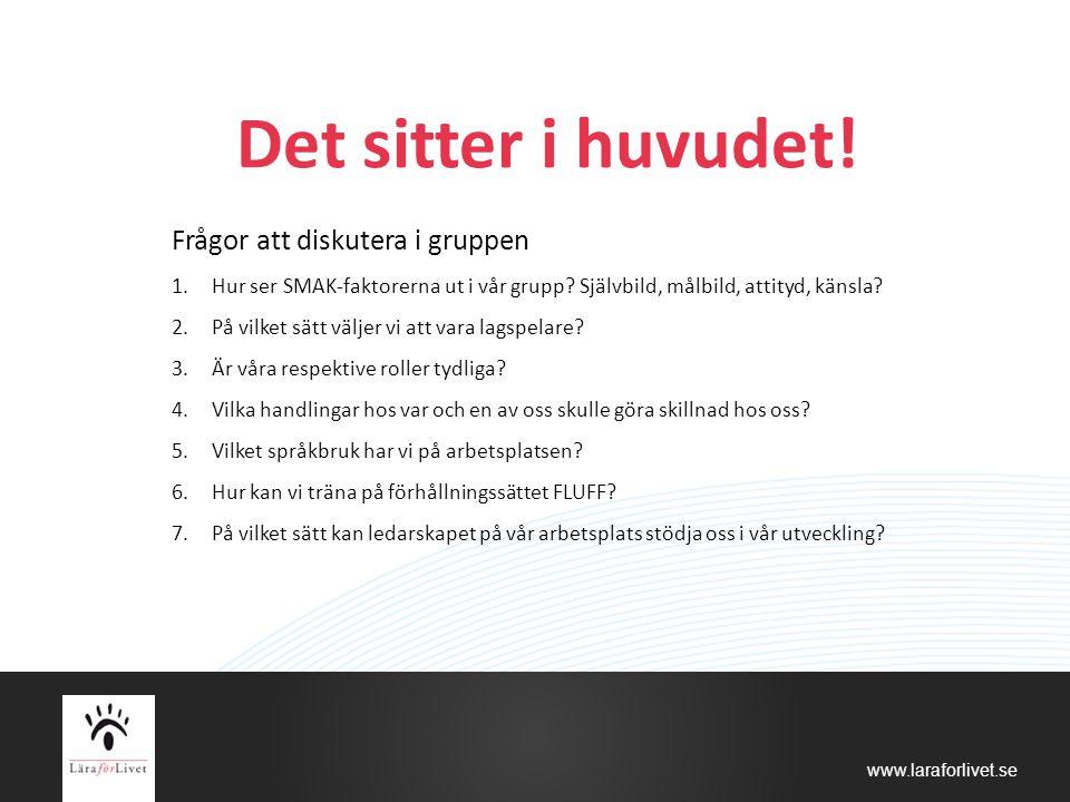 www.laraforlivet.se Det sitter i huvudet! Frågor att diskutera i gruppen 1.Hur ser SMAK-faktorerna ut i vår grupp? Självbild, målbild, attityd, känsla