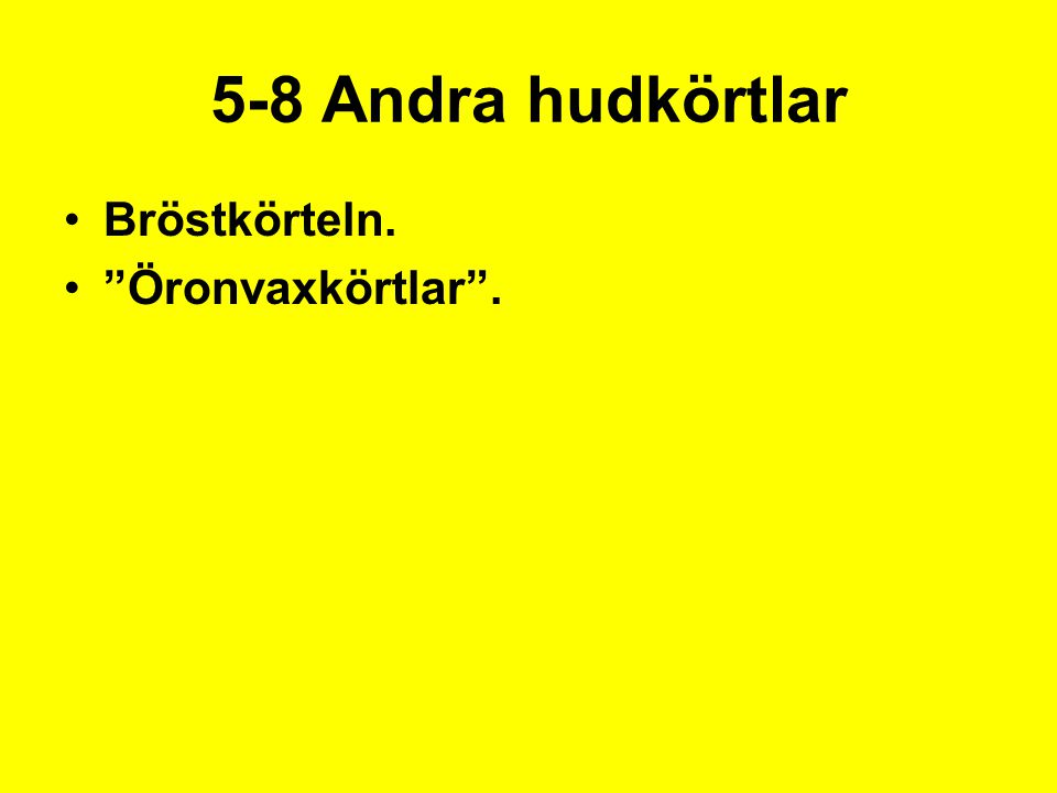 """5-8 Andra hudkörtlar Bröstkörteln. """"Öronvaxkörtlar""""."""