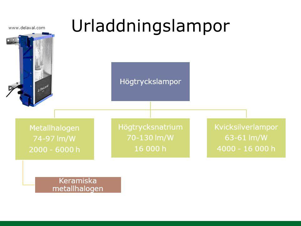 Urladdningslampor Högtryckslampor Metallhalogen 74-97 lm/W 2000 - 6000 h Keramiska metallhalogen Högtrycksnatrium 70-130 lm/W 16 000 h Kvicksilverlamp