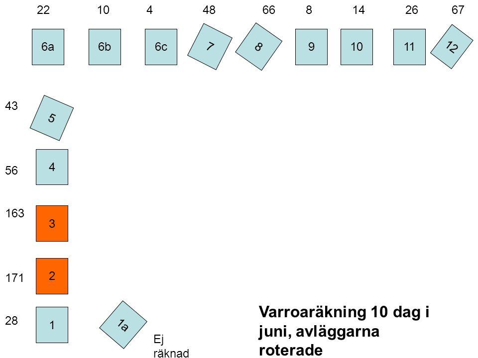 6a 4 6c 7 8 2 6b 3 1 9 10 11 Varroaräkning 10 dag i juni, avläggarna roterade 5 12 1a Ej räknad 22 10 4 48 66 8 14 26 67 43 56 163 171 28