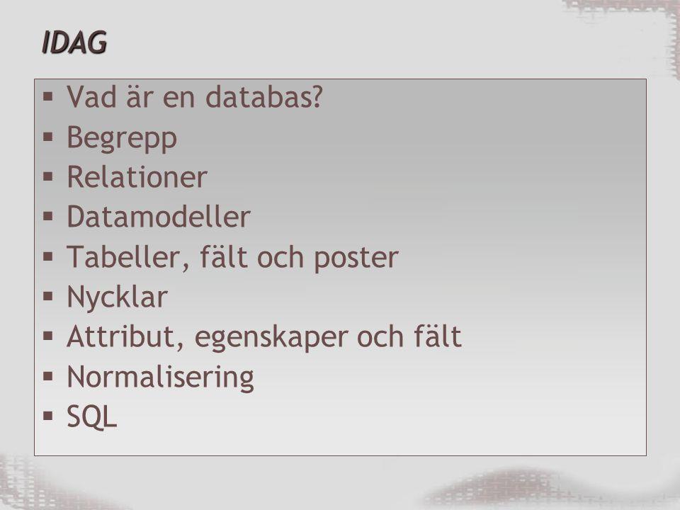 IDAG  Vad är en databas.