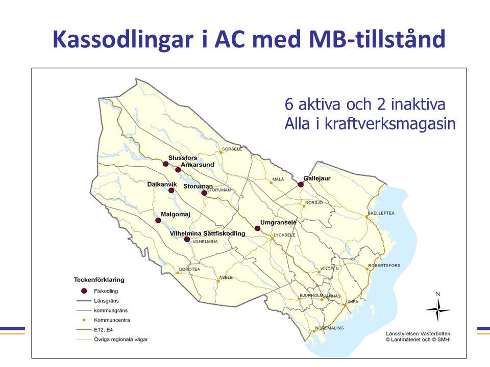 Tillsammans gör vi det hållbara möjligt Kassodlingar i AC med MB-tillstånd 6 aktiva och 2 inaktiva Alla i kraftverksmagasin