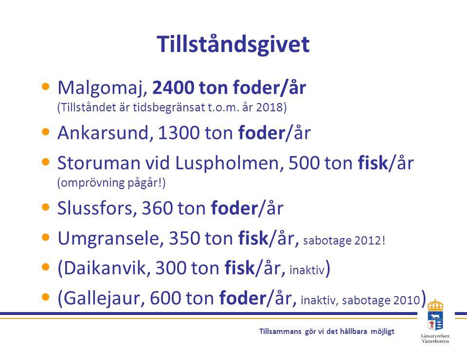 Tillsammans gör vi det hållbara möjligt Tillståndsgivet Malgomaj, 2400 ton foder/år (Tillståndet är tidsbegränsat t.o.m. år 2018) Ankarsund, 1300 ton