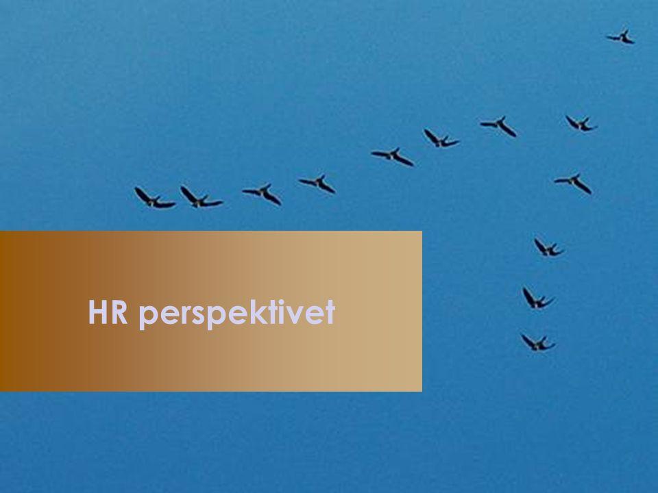 3.Relationen mellan människor/organisation är central för effektivitet och framgång 2.
