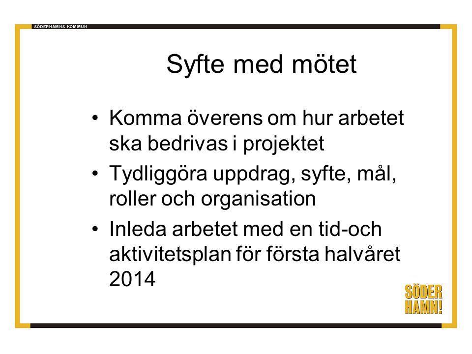 Syfte med mötet Komma överens om hur arbetet ska bedrivas i projektet Tydliggöra uppdrag, syfte, mål, roller och organisation Inleda arbetet med en tid-och aktivitetsplan för första halvåret 2014