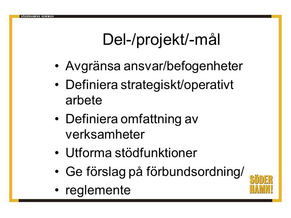 Del-/projekt/-mål Avgränsa ansvar/befogenheter Definiera strategiskt/operativt arbete Definiera omfattning av verksamheter Utforma stödfunktioner Ge förslag på förbundsordning/ reglemente