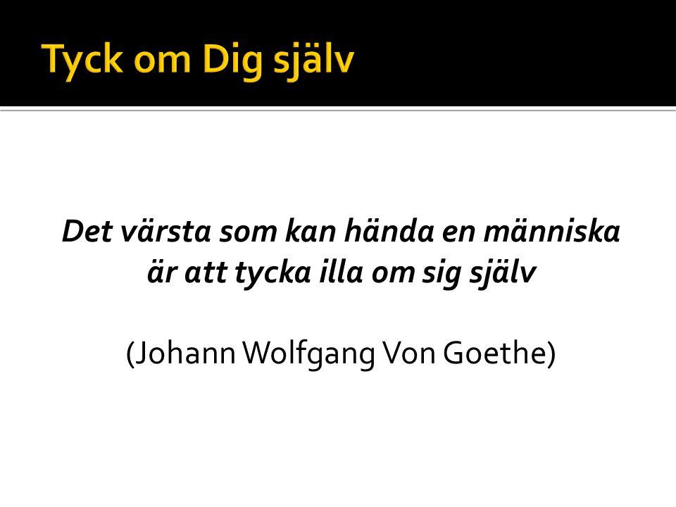 Det värsta som kan hända en människa är att tycka illa om sig själv (Johann Wolfgang Von Goethe)