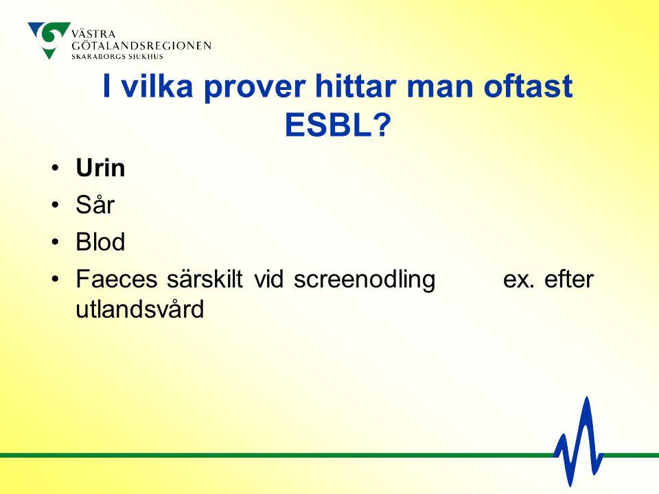 I vilka prover hittar man oftast ESBL? Urin Sår Blod Faeces särskilt vid screenodling ex. efter utlandsvård