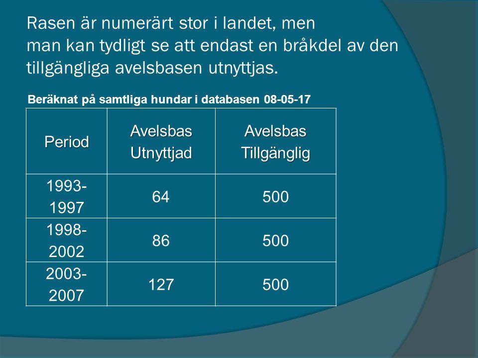 Period AvelsbasUtnyttjadAvelsbasTillgänglig 1993- 1997 64500 1998- 2002 86500 2003- 2007 127500 Rasen är numerärt stor i landet, men man kan tydligt s
